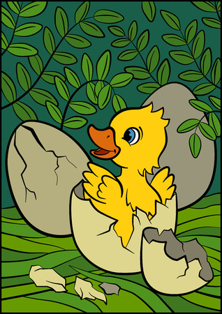 bush babies: Color pictures: birds. Little cute duckling hatched from the egg. It`s smiling and happy.