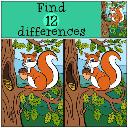 Juegos infantiles: Encuentra las diferencias. Pequeña ardilla linda se coloca en el montón de roble y tiene una bellota en sus manos. Ilustración de vector