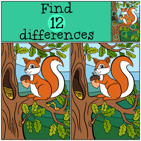Children games: Find differences. Little cute squirrel stands on the oak bunch and holds an acorn in her hands.