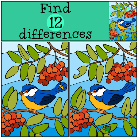 Children games: Find differences. Cute little titmouse sits on the ash twig and smiles.