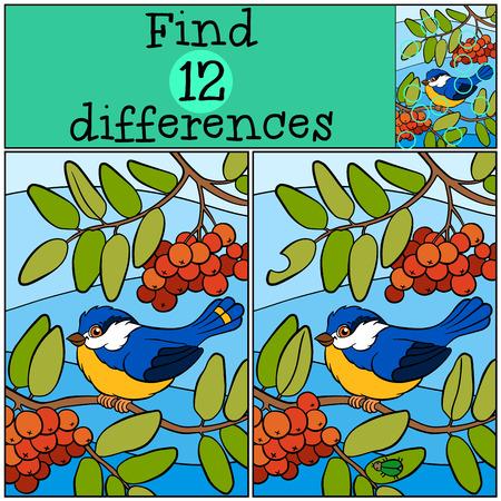 Juegos infantiles: Encuentra las diferencias. carbonero poco lindo se sienta en la rama de ceniza y sonrisas.