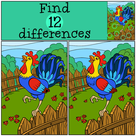 find: Children games: Find differences. Cute beautiful rooster stands on the fence and cries.