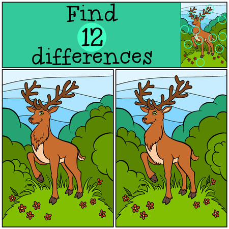 clearing: Children games: Find differences. Little cute deer stands on the clearing in the forest.