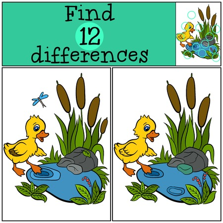 incubation: Children games: Find differences. Little cute duckling is trying to enter to the pond.