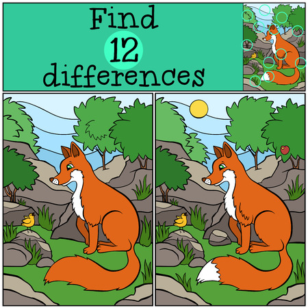 spot the difference: Children games: Find differences. Little cute fox sits and looks at the singing bird. Illustration