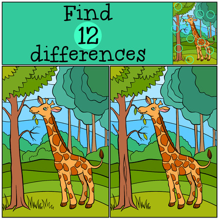 eats: Children games: Find differences. Little cute giraffe eats leaves in the forest.