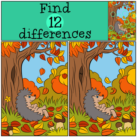 Children games: Find differences. Little cute hedgehog lays near big tree. Autumn.