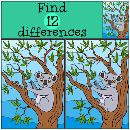 puzzlement: Children games: Find differences. Little cute koala sits on the tree branch and eat leaves. Illustration