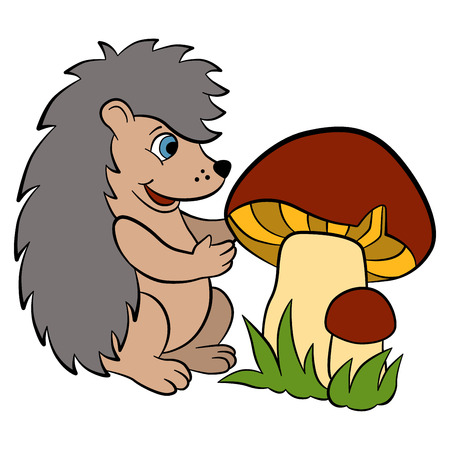 prickly fruit: Cartoon wild animals for kids. Little cute hedgehog looks at the big beautiful mushrooms. Hi is happy. Illustration