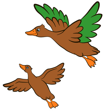 squeak: Cartoon birds for kids. Two little cute ducks flies and smiles. They are happy.