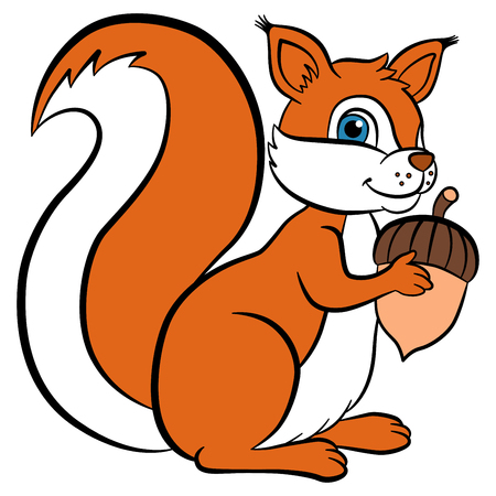 downy: Cartoon wild animals for kids. Little cute squirrel holds an acorn in the hands and smiles. She is happy. Illustration
