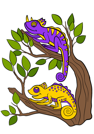 mimicry: Cartoon animals for kids. Two little cute chameleons sits on the tree branch.