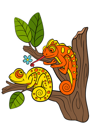 Cartoon animals for kids. Two little cute chameleons sits on the tree branch.