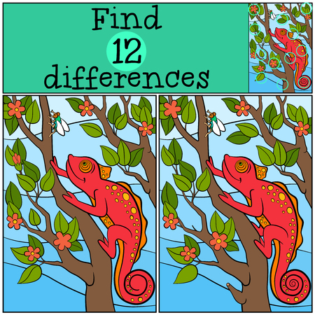 spot the difference: Children games: Find differences. Little cute red chameleon sits on the tree branch and looks at the fly.