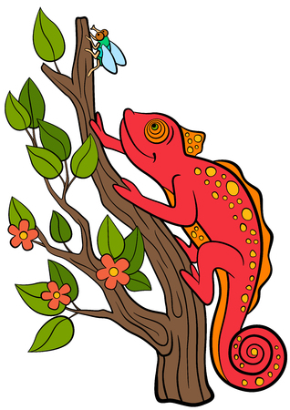 mimicry: Cartoon animals for kids. Little cute red chameleon sits on the tree branch and looks at the fly. Illustration