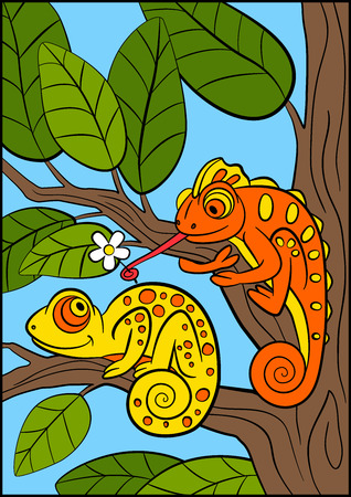 Cartoon animals for kids. Little cute orange chameleon gives flower to yellow chameleon and smiles. Illustration