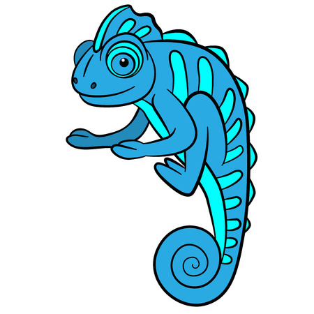 mimicry: Cartoon animals for kids. Little cute blue chameleon smiles. Illustration