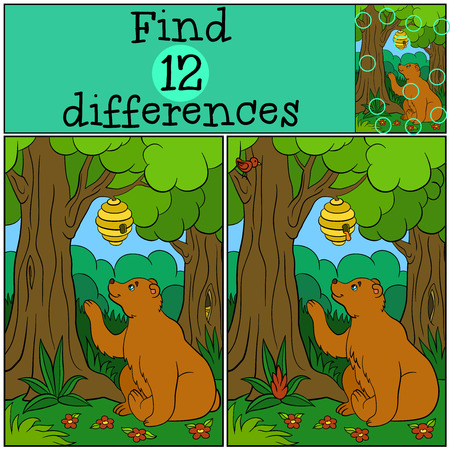 spot the difference: Children games: Find differences. Cute bear looks at the beehive and in the forest.
