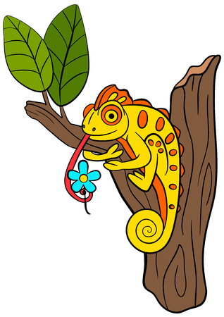 mimicry: Cartoon animals for kids. Little cute chameleon sits on the tree branch with flower.