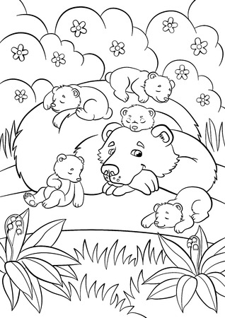 baby bear: Coloring pages. Wild animals. Kind bear looks at little cute baby bears and smiles. Illustration