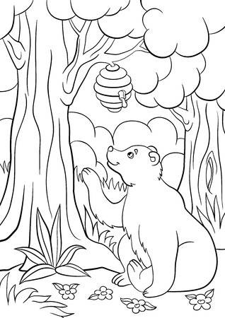 Coloring pages. Wild animals. Cute bear looks at the hive with honey and smiles. Illustration