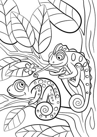 Gekleurde pagina's. Wilde dieren. Twee kleine schattige kameleon zit op de boomtak. Stock Illustratie