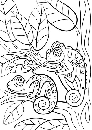 Coloring pages. Wild animals. Two little cute chameleon sits on the tree branch.