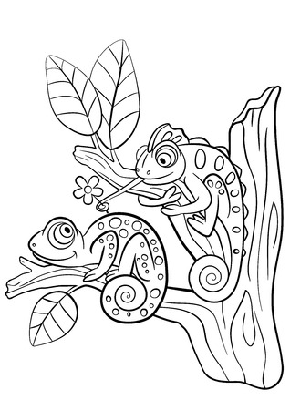 two animals: Coloring pages. Wild animals. Two little cute chameleon sits on the tree branch.