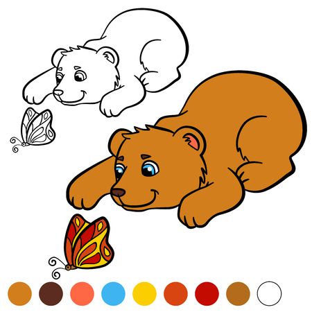 book pages: Coloring page. Color me: bear. Little cute baby bear looks at the butterfly.