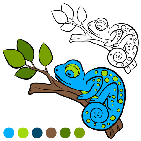 coloration: Coloring page. Color me: chameleon. Little cute chameleon sleeps on the tree branch. Illustration