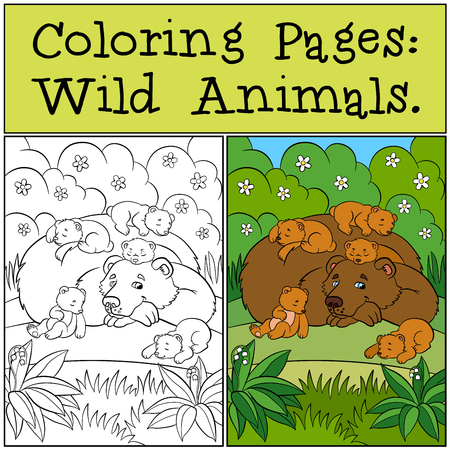 babe: Coloring Pages: Wild Animals. Daddy bear with his little cute babe bears in the forest.