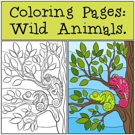 chameleons: Coloring Pages: Wild Animals. Two little cute chameleons sits on the tree branch.