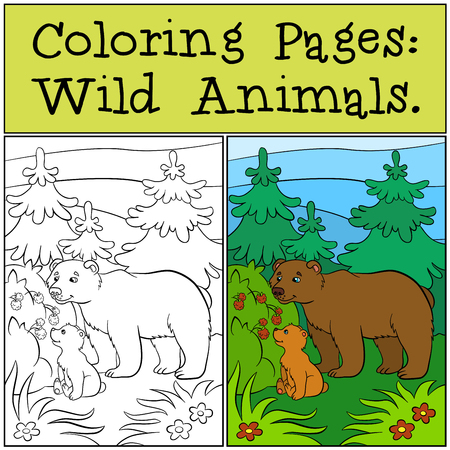 babe: Coloring Pages: Wild Animals. Daddy bear with his little cute babe bear in the forest looks at the raspberry. Illustration