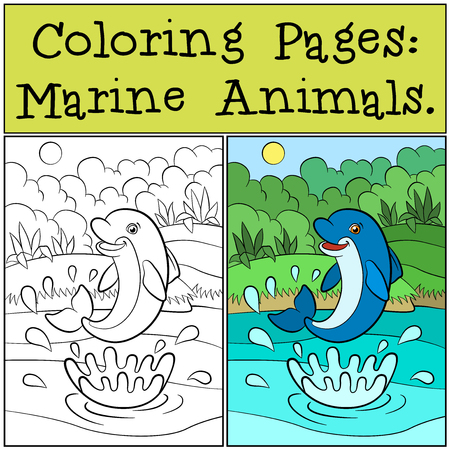 Cute Dolphin Playing With A Ball Black And White Illustration General Jumping Coloring Books
