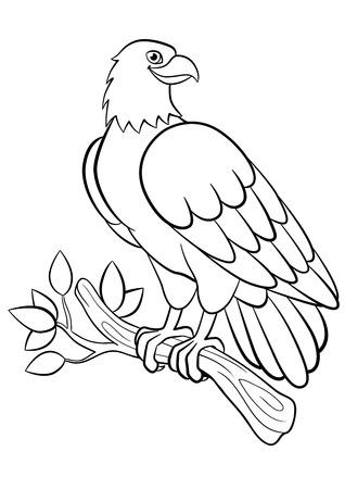 Aves De Dibujos Animados Para Los Niños: águila. Sonrisas águila ...