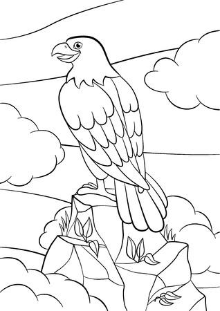 着色のページ。野生の鳥。かわいいイーグル ロックと笑顔で座っています。  イラスト・ベクター素材
