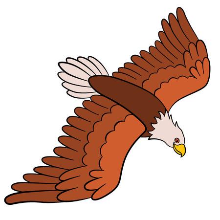 Cartoon birds for kids: Eagle. Cute bald eagle flies and smiles.