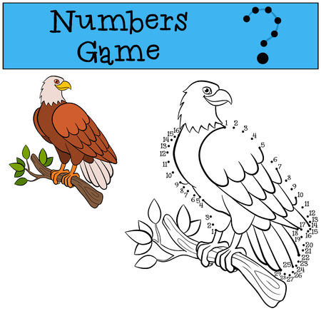 cartoon eagle: Educational games for kids: Numbers game. Cute bald eagle sits and smiles.