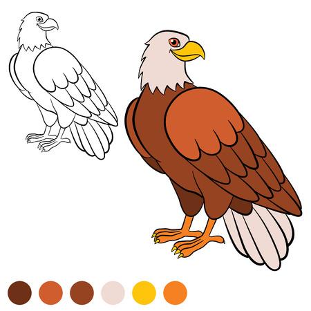 Malvorlage. Color Me: Adler. Netter Weißkopfseeadler Sitzt Auf Dem ...