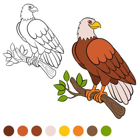 Dibujo Para Colorear. Color Me: águila. Linda Vuelo Del águila Calva ...