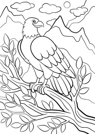 Coloriage. Oiseaux sauvages. Mignon aigle assis sur la branche d'arbre dans les montagnes et les sourires.