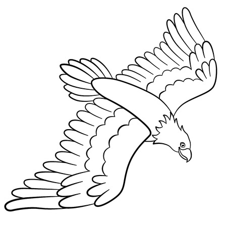 Coloring Pages Wild Birds Cute Eagle Flies And Smiles Stock Vector
