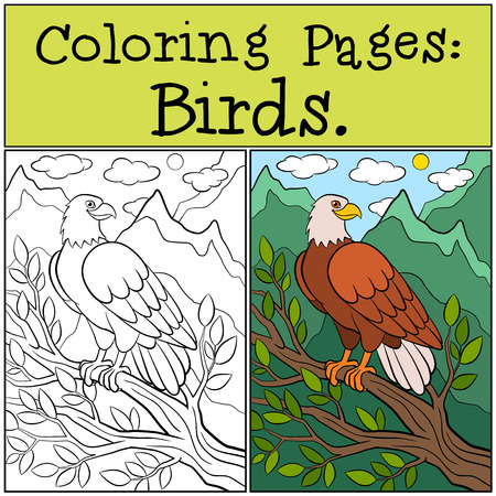 Coloring Pages: Wild Birds. Cute bold eagle sits on the tree branch and smiles.