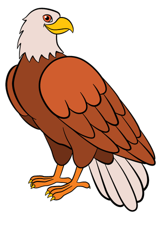 Cartoon birds for kids: Eagle. Cute bald eagle smiles.
