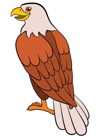Cartoon birds for kids: Eagle. Cute bald eagle sits and smiles.