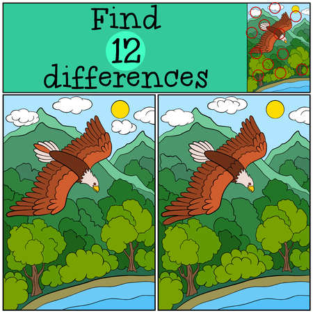bald spot: Children games: Find differences. Cute bald eagle flying under the forest and smiling. Illustration