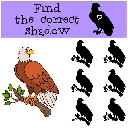 cartoon eagle: Children games: Find the correct shadow. Cute bald eagle sits on the tree branch and smiles.
