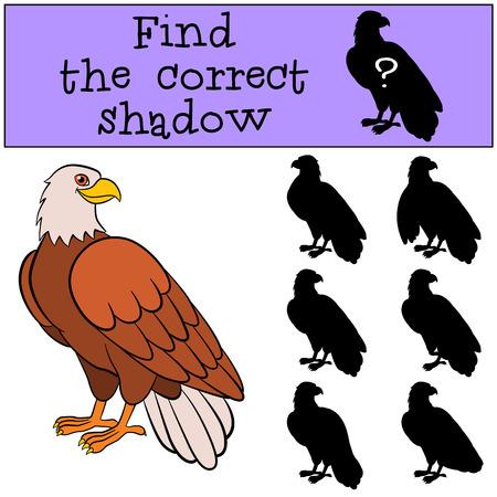 silueta humana: Juegos infantiles: Buscar la sombra correcta. águila calva lindo se sienta y sonríe. Vectores