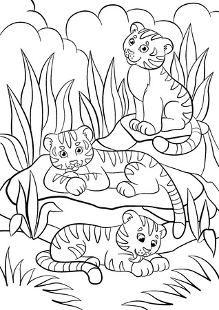 Coloring pages. Wild animals. Three little cute baby tigers in the forest.