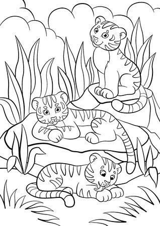 Disegni da colorare. Animali selvaggi. Tre piccole tigri cute baby nella foresta. Archivio Fotografico - 58868914